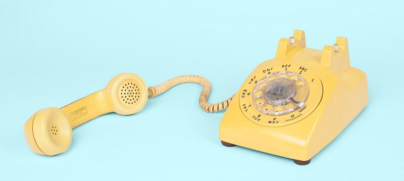 cannabis advocacy: phone bank your legislator