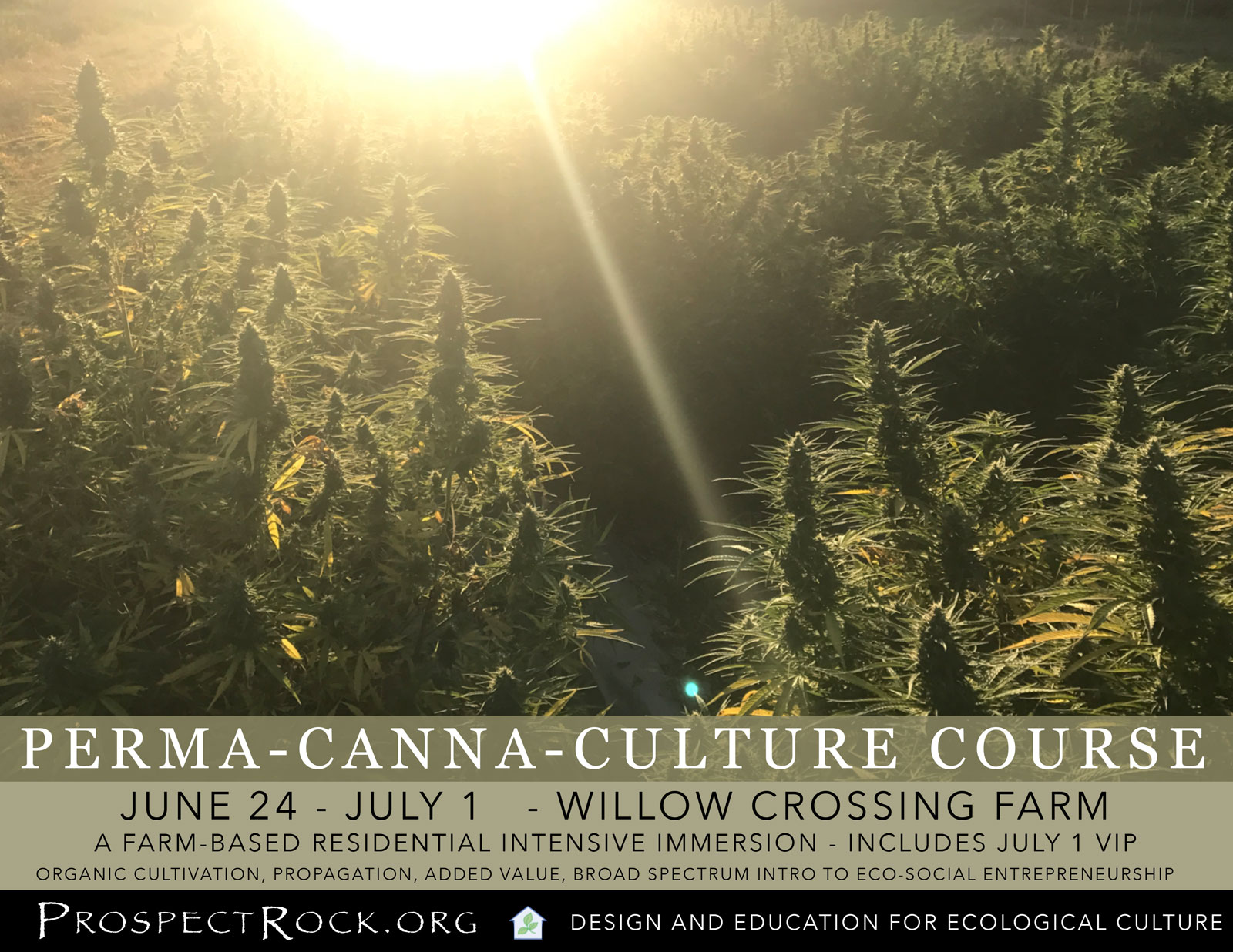 Residential Intensive CannaCulture Course at Willow Crossing